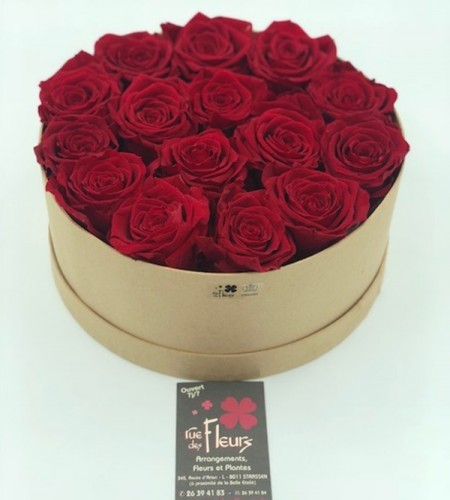 Roses éternelles 1