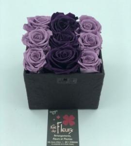 Roses éternelles 4