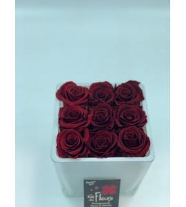 Roses éternelles 7