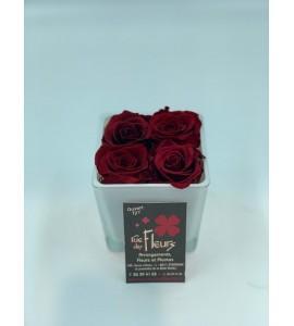 Roses éternelles 8