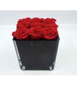 Roses éternelles prestige